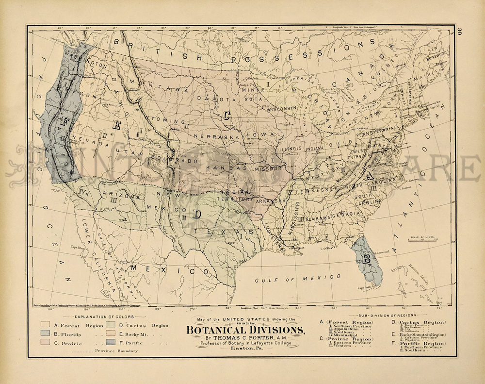 1875 botanical division map of u s hand colored for each region by thomas porter printed by gray 17x14 1 2 in 60
