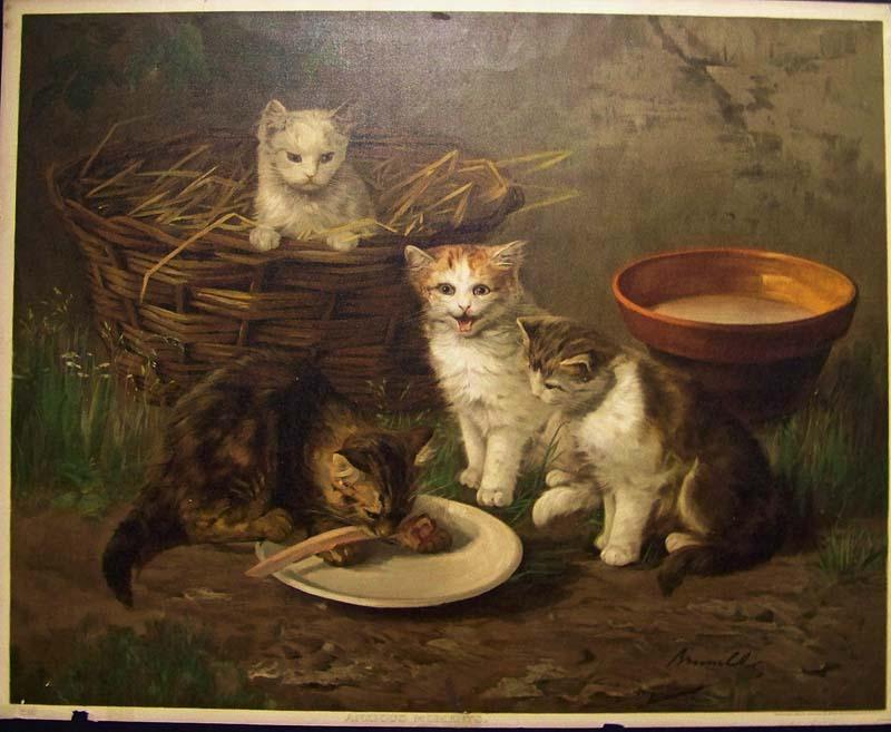 Prints Old Amp Rare Cats Antique Maps Amp Prints